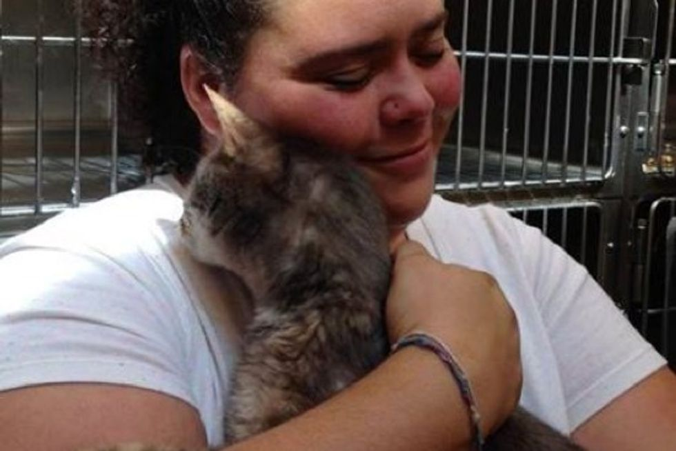 Stolen Cat Reunited With Human Mom After 10 Years