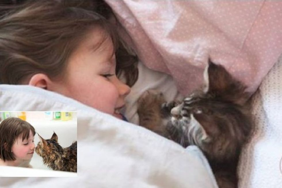 Thula The Cat Helps A Girl With Autism Live A Full Life