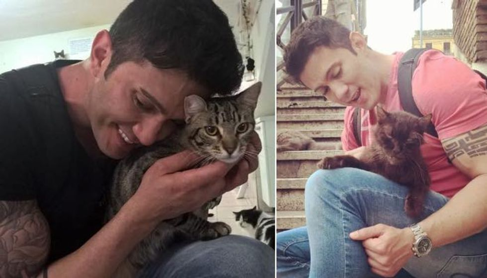 Man Visits Cats Wherever He Travels and Rescues Those Who Need a Home (10+ photos)
