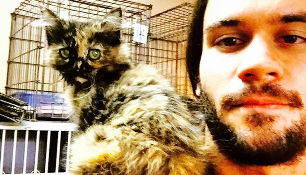 Shoulder Kitten Picks Man at the Shelter, Then and Now!