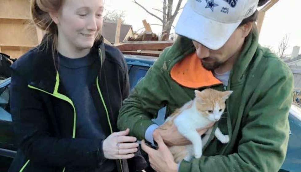 Family Never Gave Up Looking for Their Cats After Tornado Destroyed Their Home