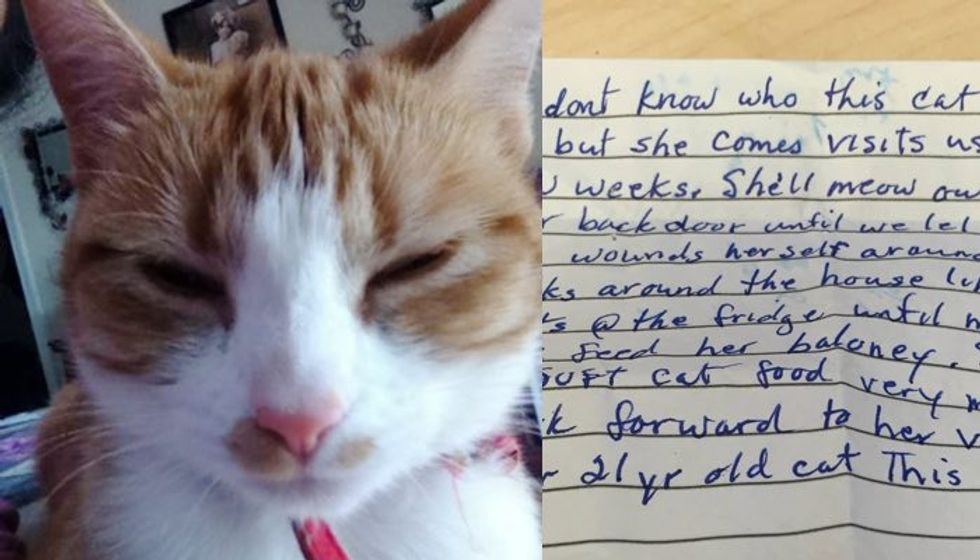 Cat Went to Visit Neighbors and Came Home with This Note attached to Her