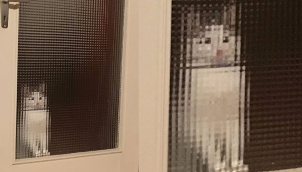 Man Comes Home to a Pixelated Cat Waiting for Him by the Door