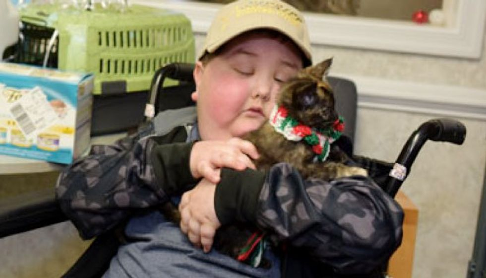 Shelter Kitten Made Terminally-ill Child's Dream Come True. Now They are Inseparable!