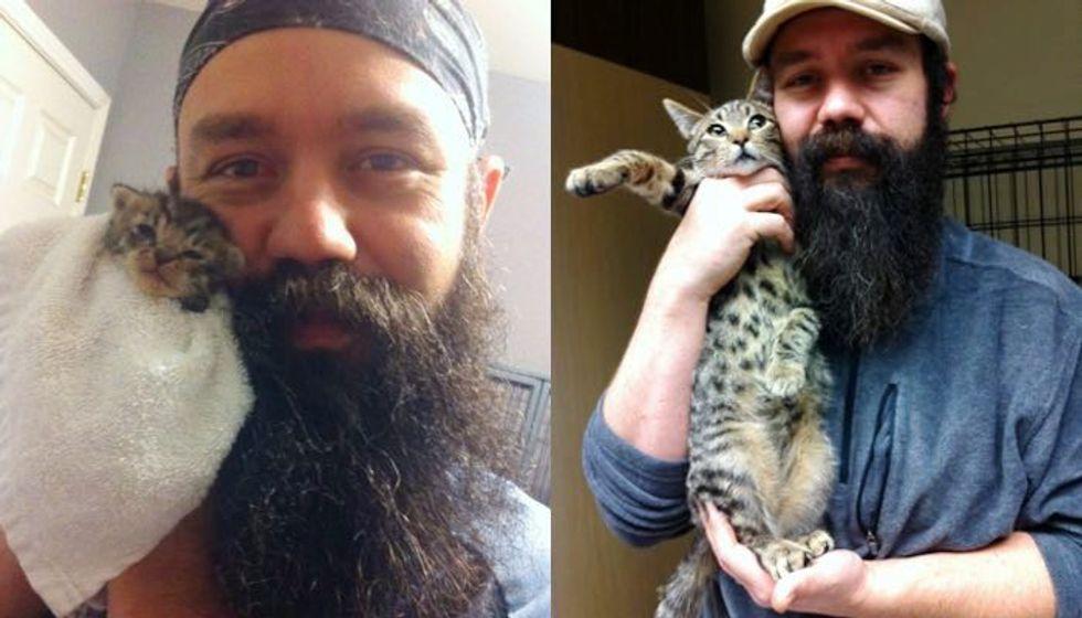 Man Shows Rescue Kitten Growing Faster Than His Beard