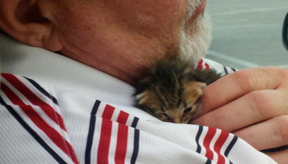 Man Rescues a Helpless Kitten from Dumpster, the Kitty Rescues Him Too!