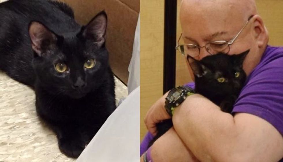 Rescue Cat Saved Man's Life Days After He Got Him Out of Shelter