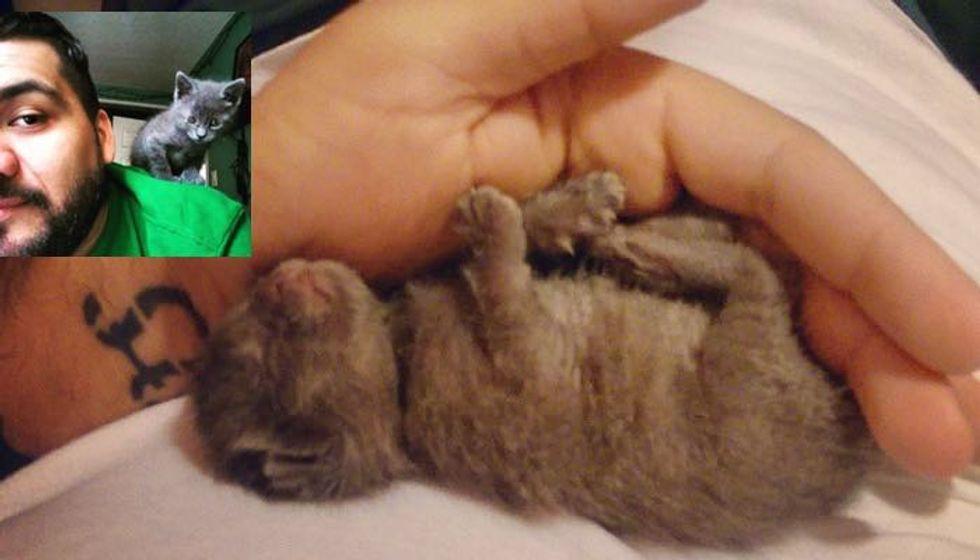 Man Finds Tiny Newborn Kitten Alone In the Rain