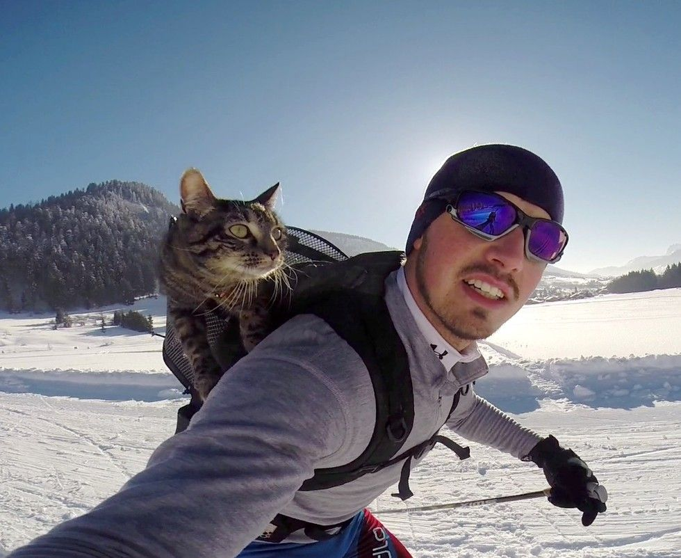 man adopted shelter cat goes on adventures with her