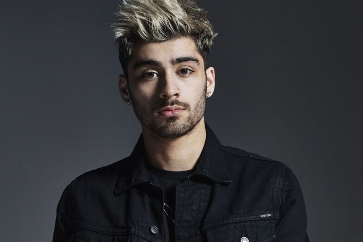 Zayn Malik Has a Cat Named Garfield, Wants You to Do It To His Music
