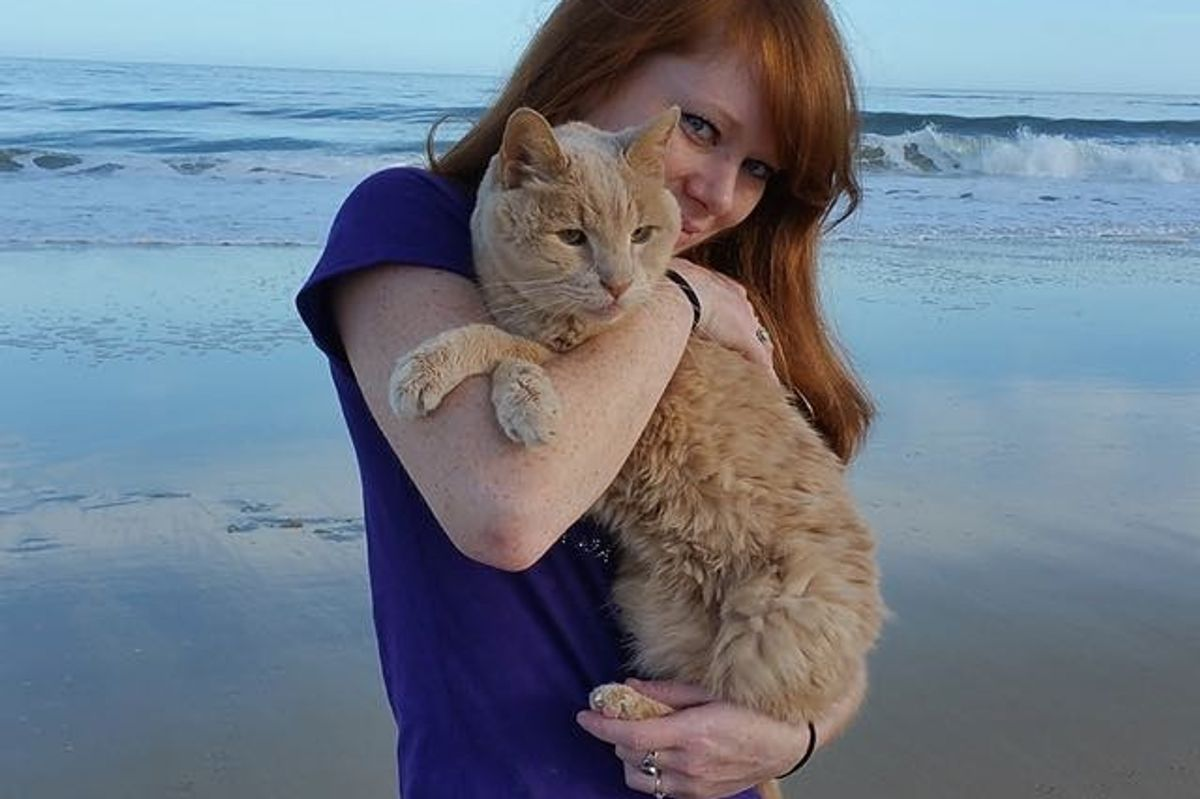 Woman Saves 21 Year Old Cat, is on a Mission to Help Him Live Out His Best Life