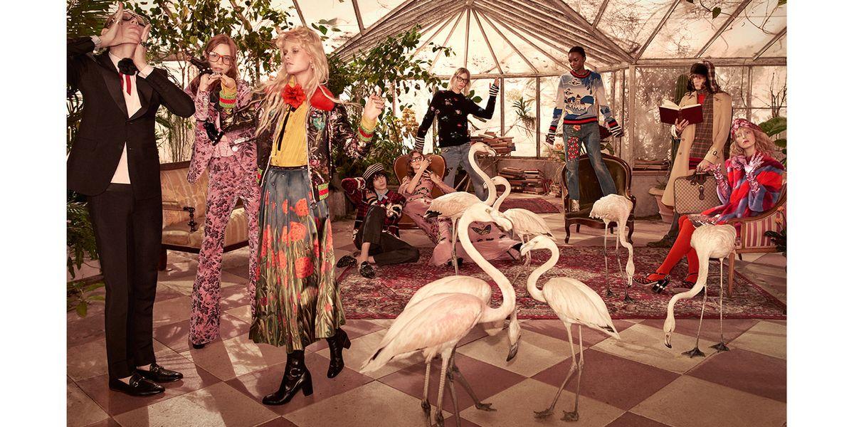 High-Fashion Flamingos Seek Model Agent