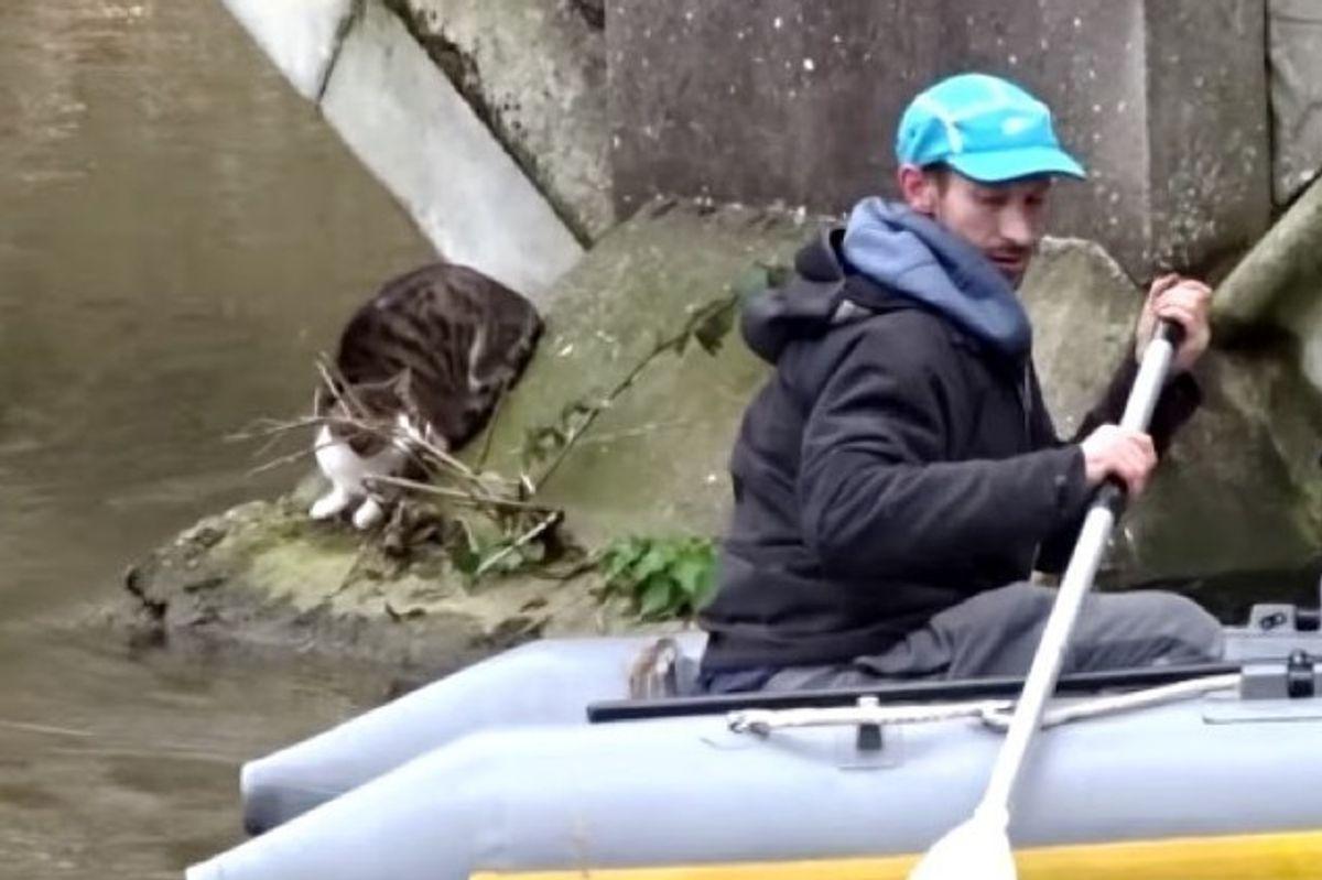 men rescued cat stranded under bridge in a boat