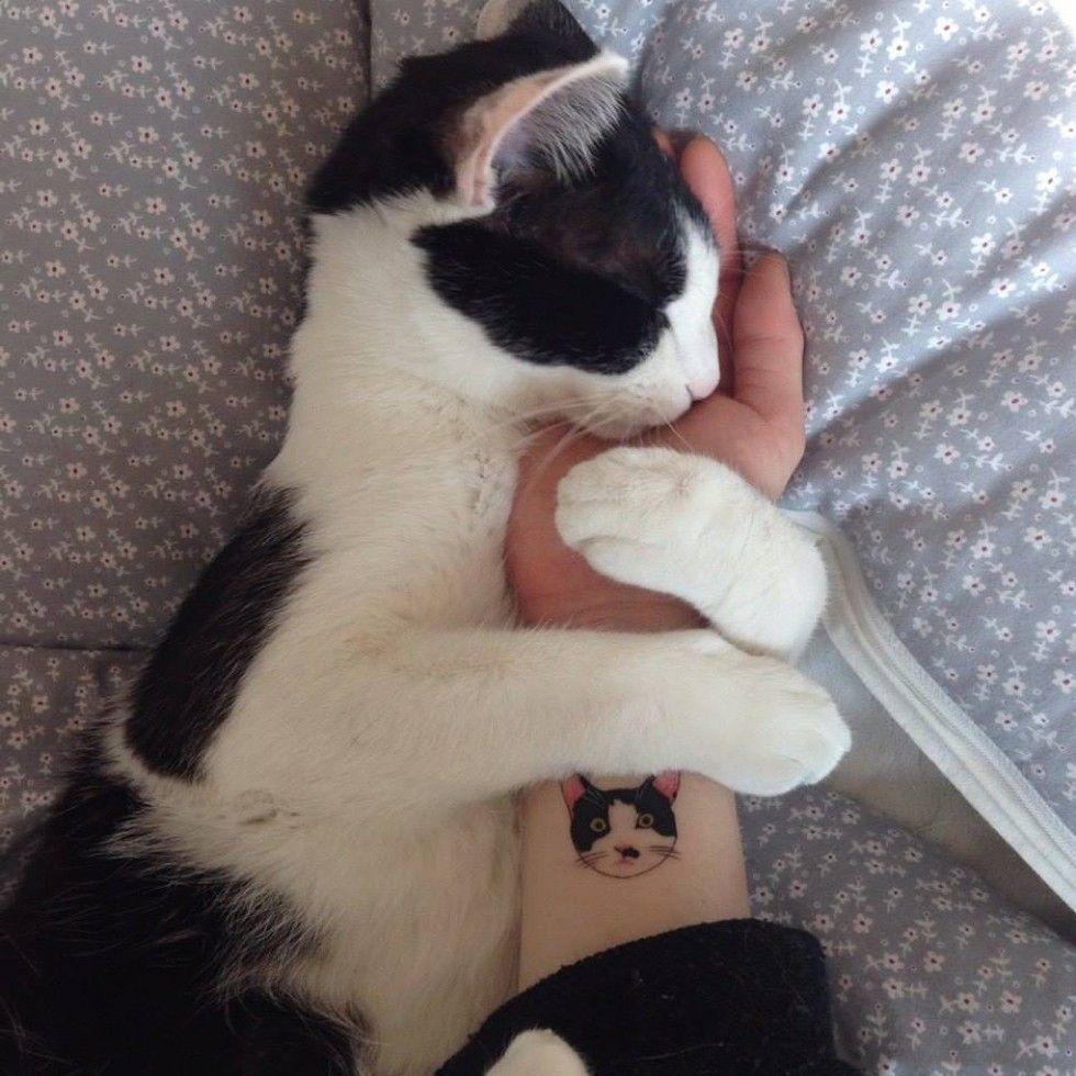 cat tattoo hug