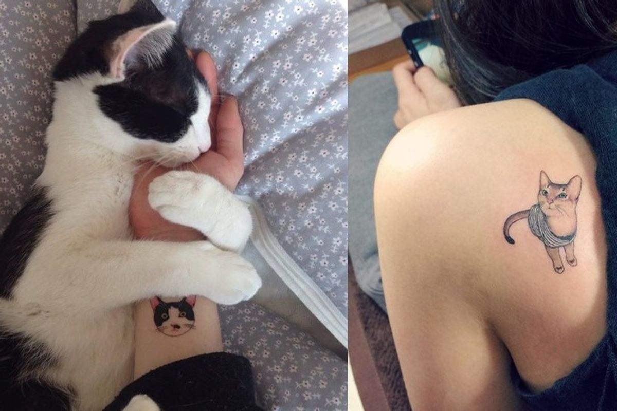 Underground Tattoo Artists Show Their Love for Cats Through Tats