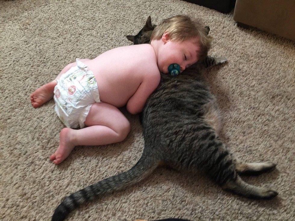 baby boy and tabby cat cuddling