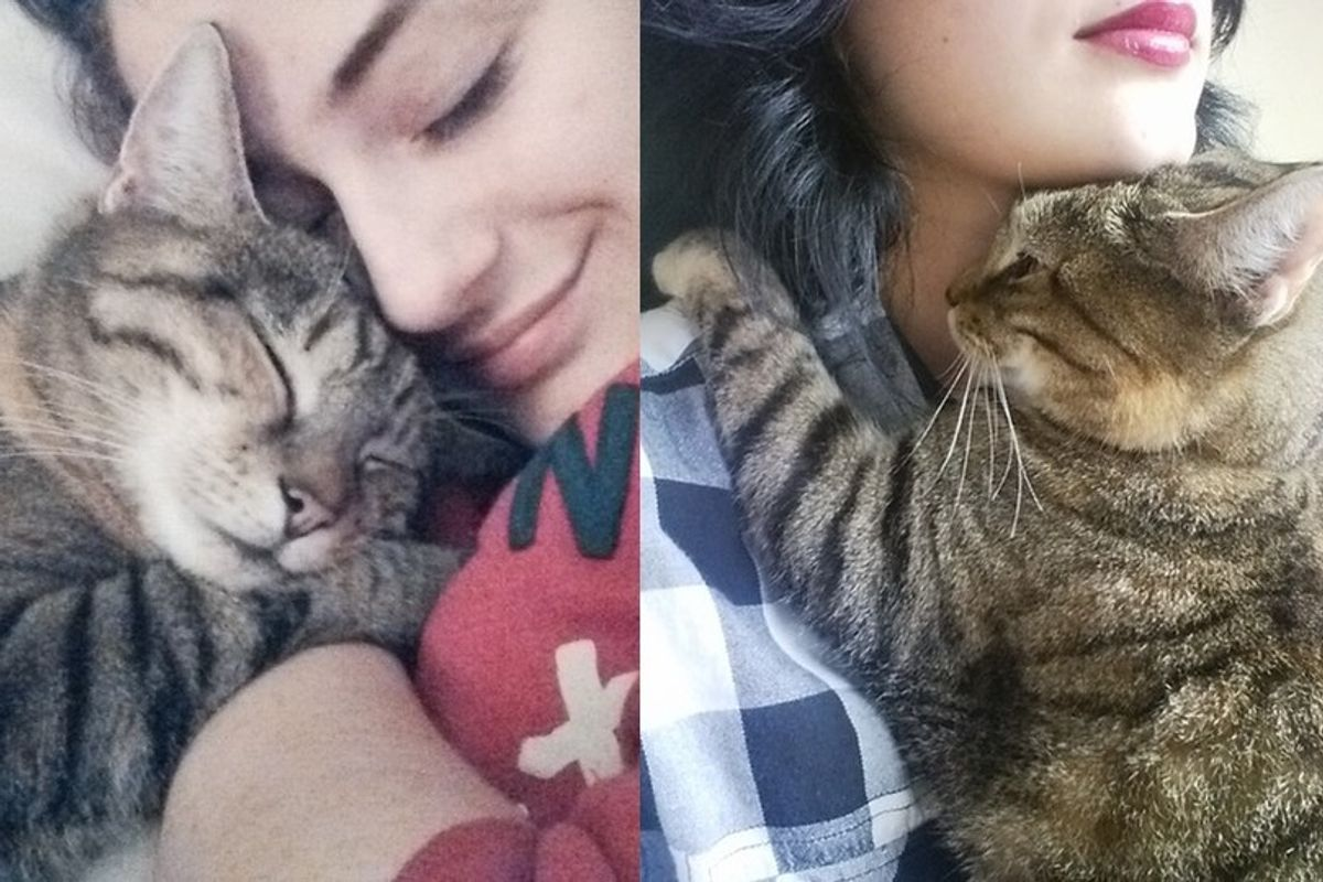 Cat Loves Her Human So Much She Hugs and Watches Over Her Every Step of the Way