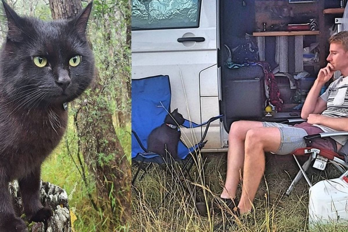 Man Left His Job and House to Travel With His Cat Who Rescued Him
