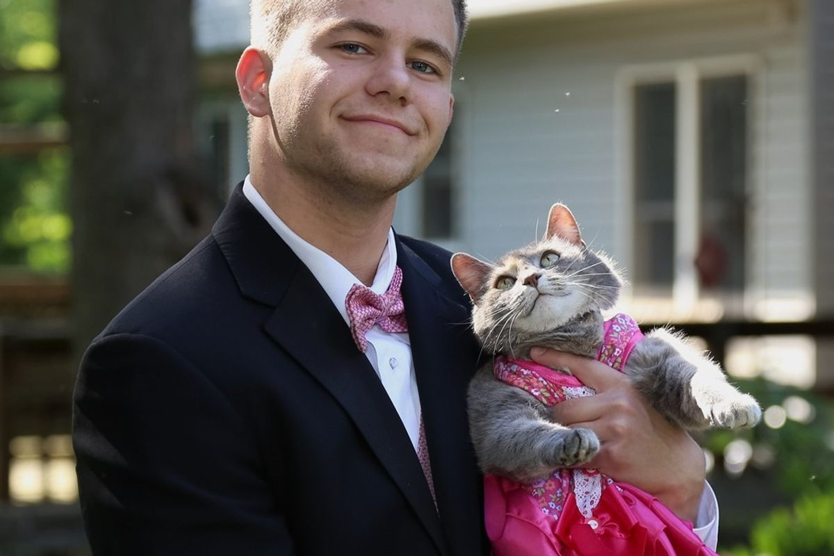 This Guy Couldn't Find a Date to School Prom, So He Took His Cat