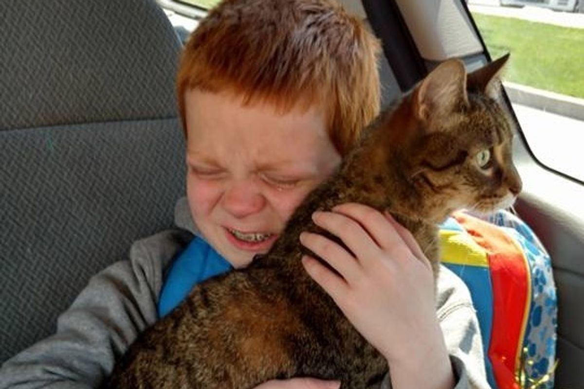 9-year-old Boy with Autism Breaks into Tears When He Reunites With Cat, His Best Friend