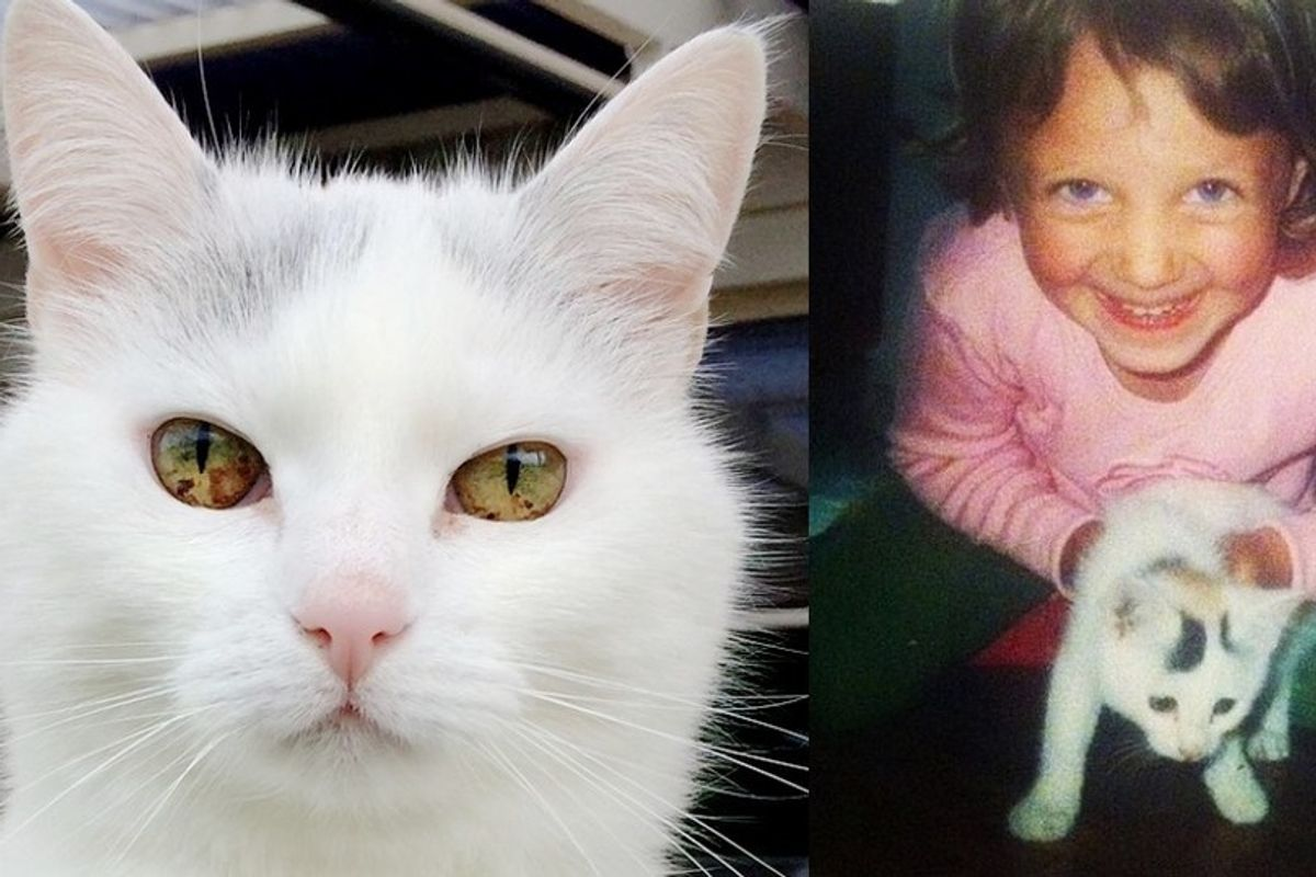 5-year-old Girl Found a Tiny Kitten, 17 Years Later, They are Still Together