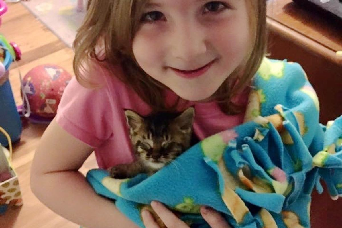 5-year-old Girl Helps Save Kitten, They Can't Stop Cuddling