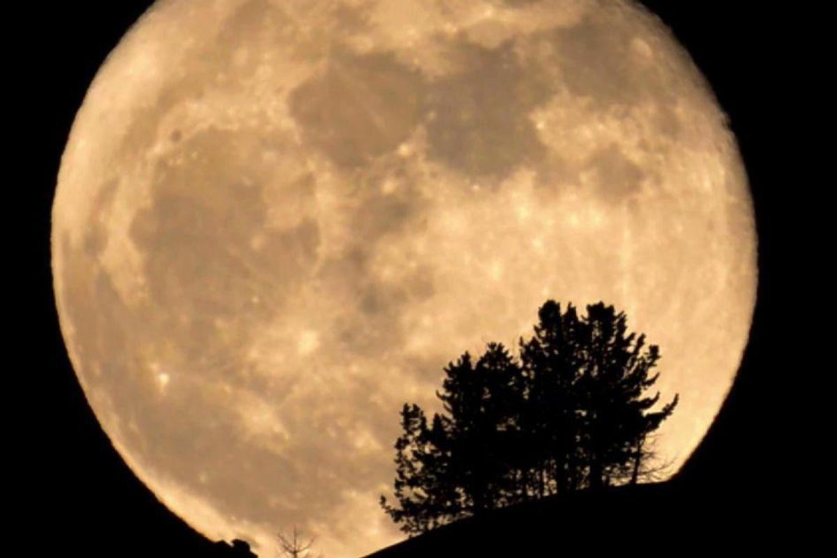 "See the Very Rare ""Strawberry Moon"" Tonight"