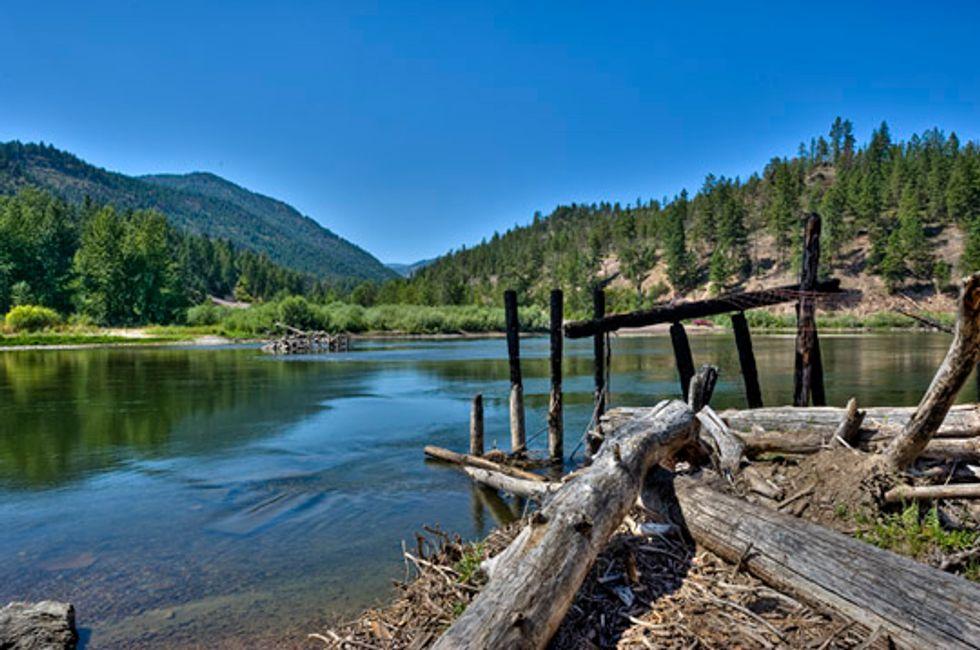 New National Forest Program a Good Start