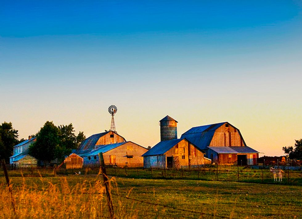 Bold Changes Needed for Federal Farm Bill