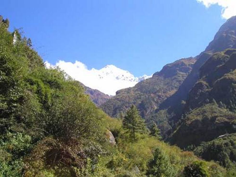 Protecting the Forests of Nepal