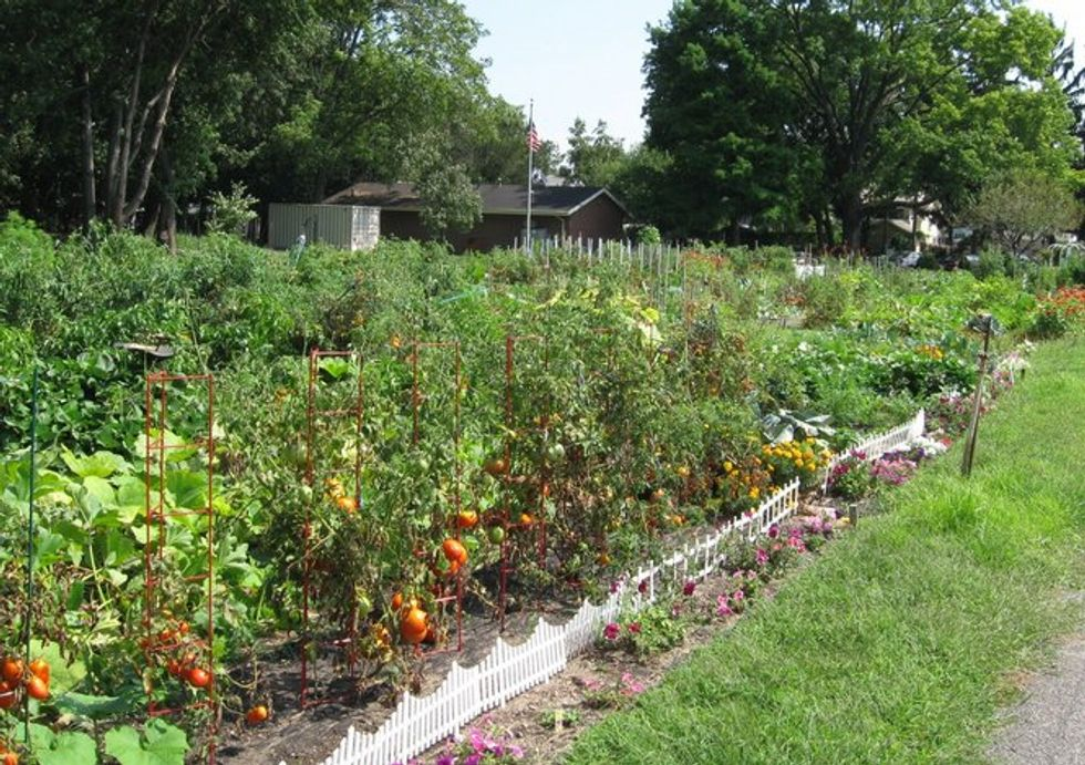 People's Garden Initiative Expanded across the Nation