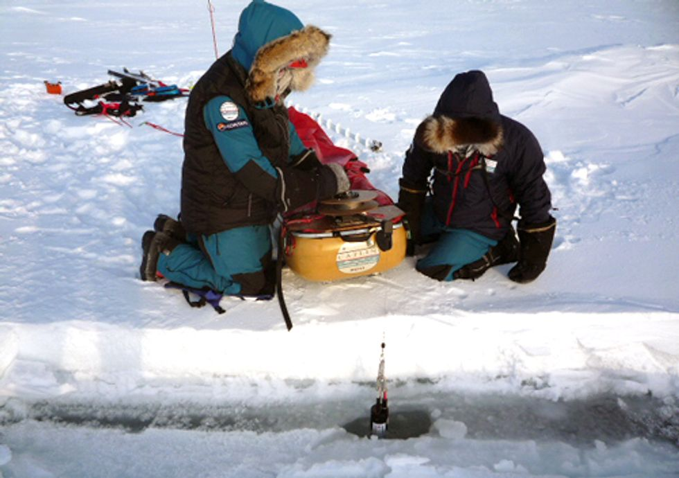 Ice Loss Linked to Rise in Atmospheric Carbon