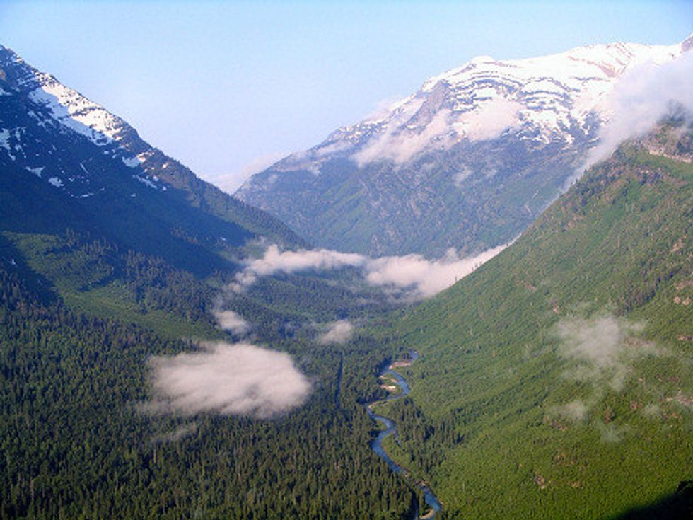 House and Senate Unite to Protect America's Roadless Forests
