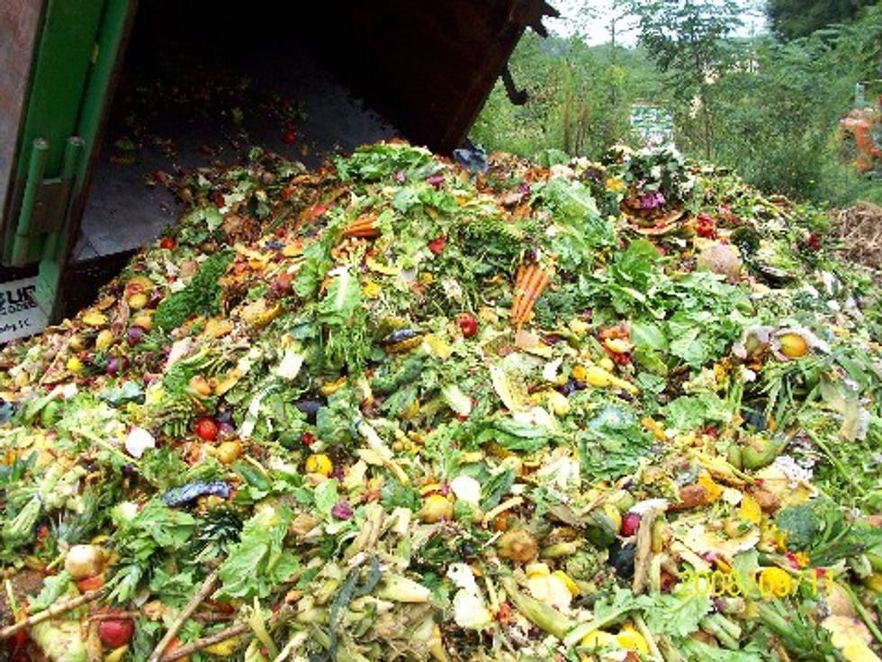 Reducing Food Waste During the Holiday Season