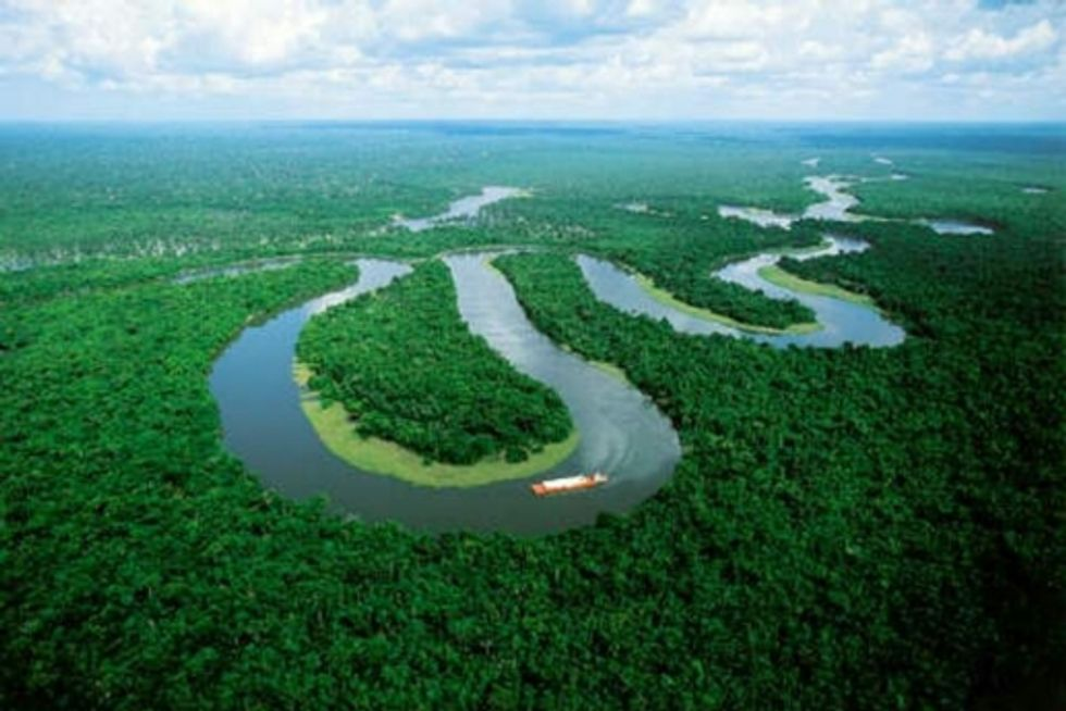 Saving Forests a Critical Step in Curbing Climate Change