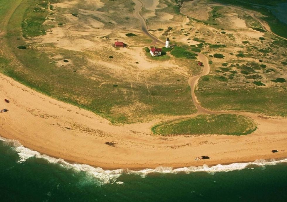 Cleaning Up the Cape's Algae Problem