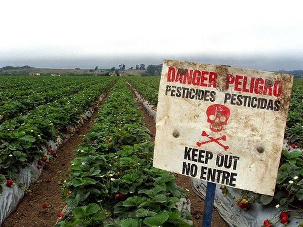 Before Trial, Victims of Pesticide Corporations Share Their Stories