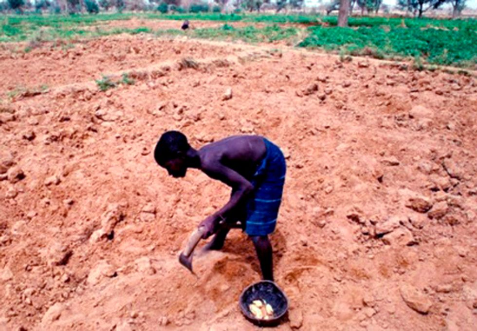 Changes in Climate Trends Impacting Livelihoods and Food Security in the Sahel and West Africa