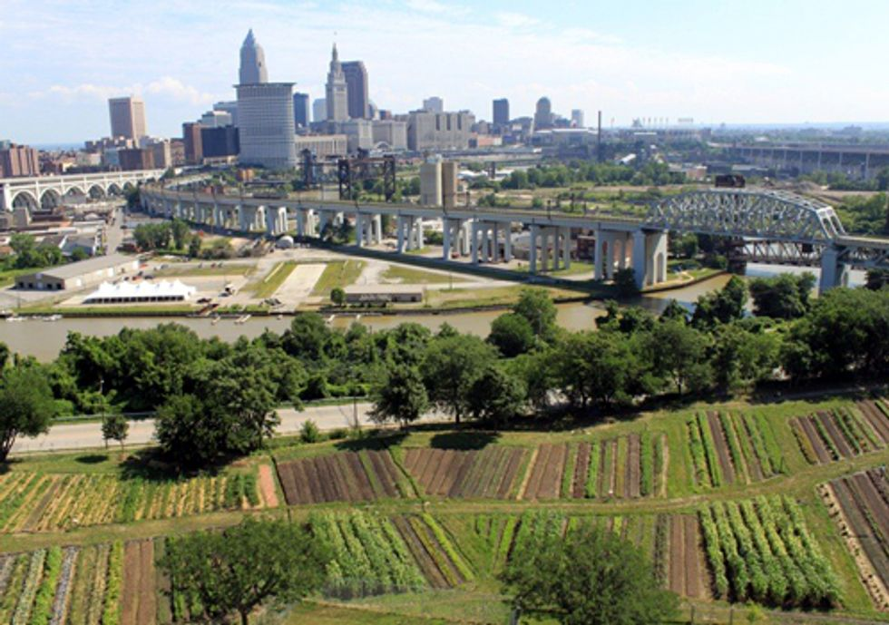 Urban Agriculture Study Highlights National Best Practices