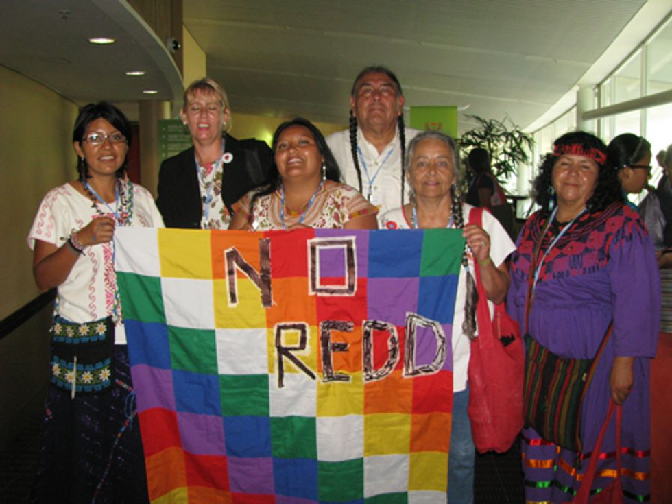 Indigenous Peoples Call for a Moratorium on REDD+