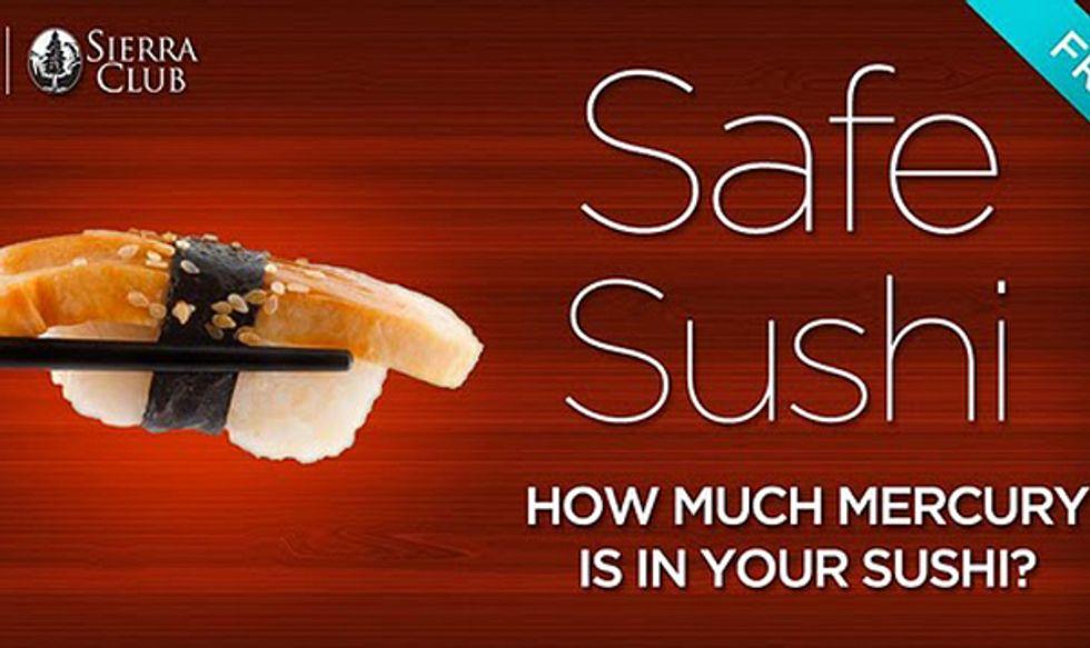 Sierra Club Launches Safe Sushi App