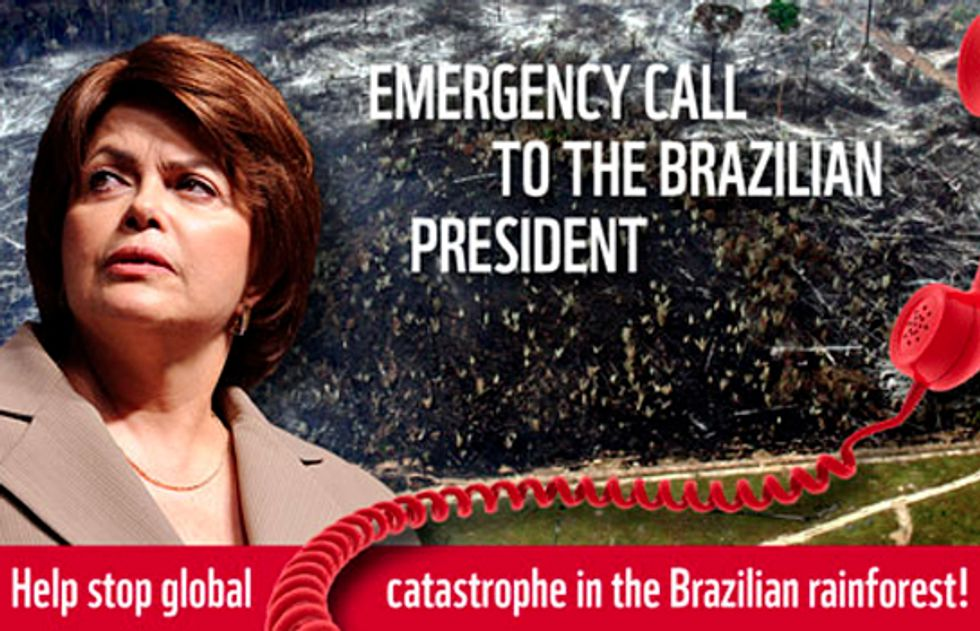 Emergency Call for Brazil's Rainforests