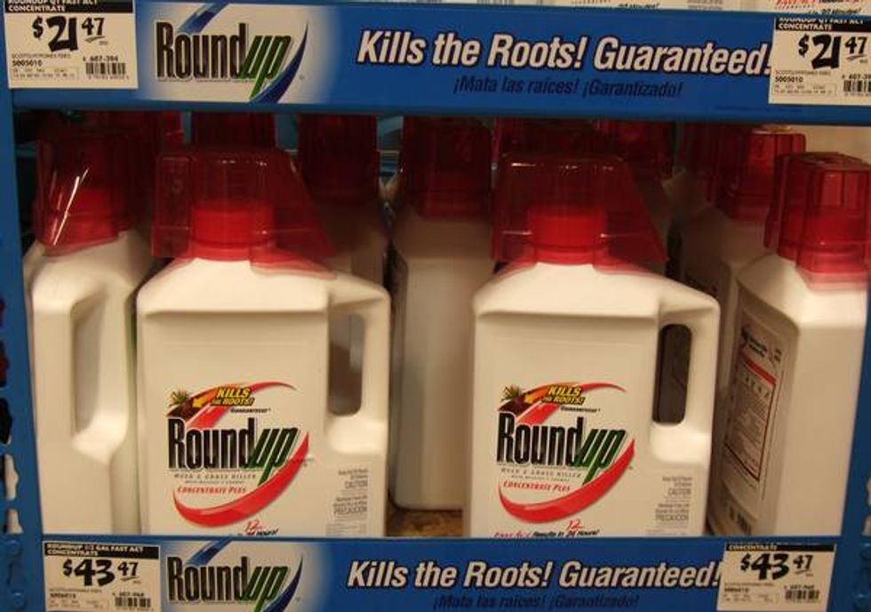 Roundup Is Killing Us