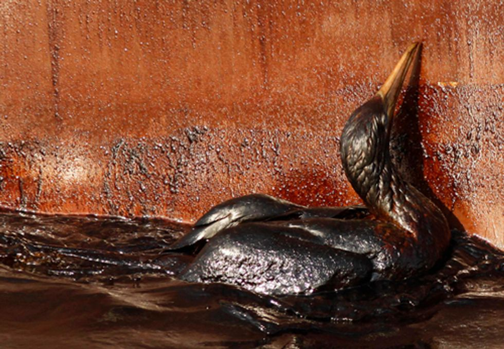 New Oil Drilling Lease Ignores Deepwater Horizon Disaster