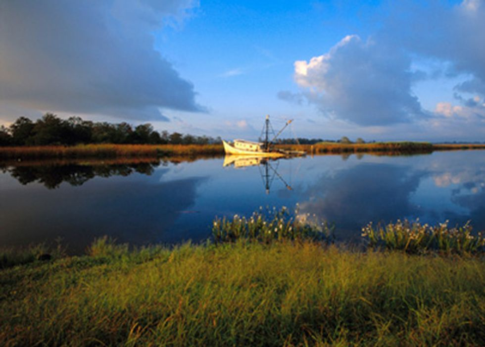 First Round of Gulf Restoration Projects a Positive Step