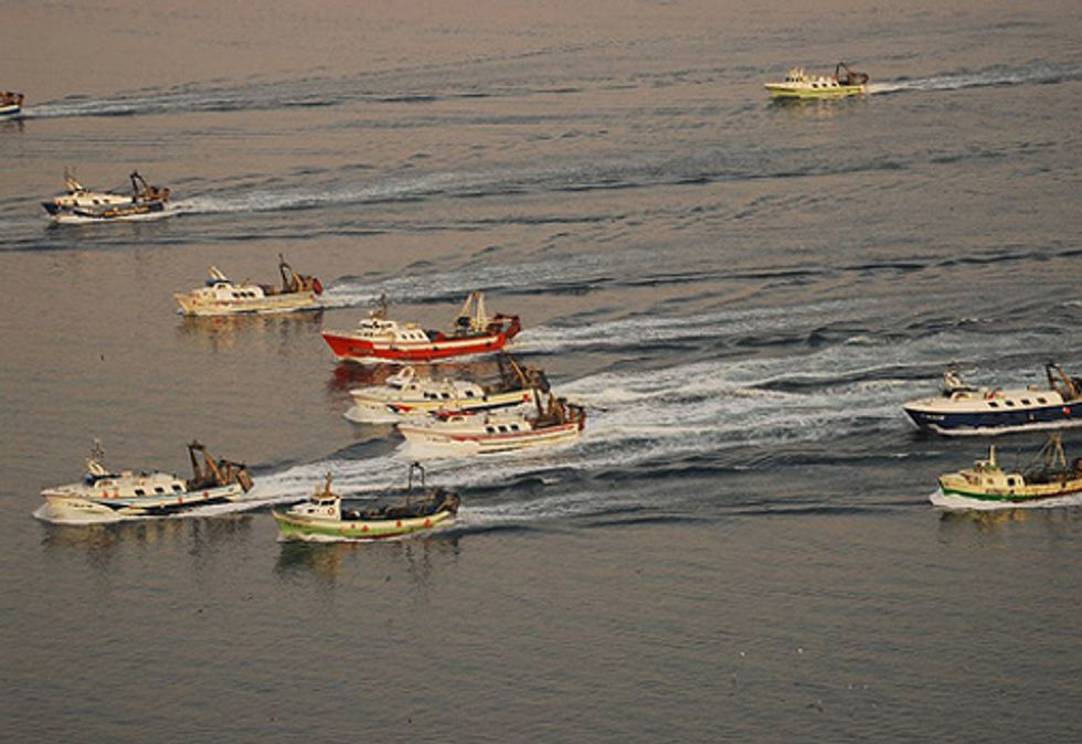 Trade Ministers Call for Action on Dangers of Fishing Subsidies