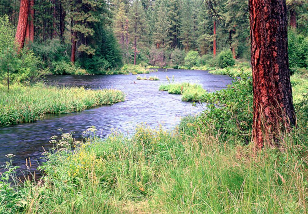 New Year's Resolutions for Rivers