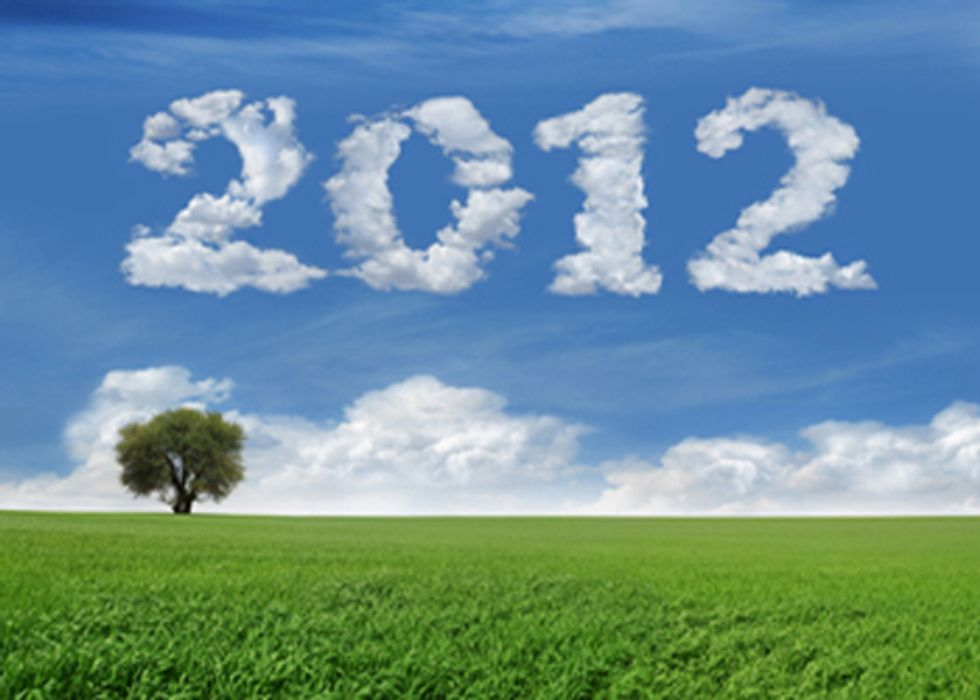 12 Simple Steps for Going Green in 2012