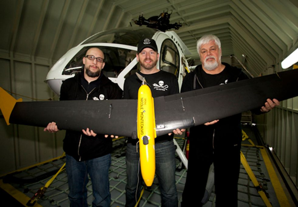 Sea Shepherd Moves in on Japanese Whaling Fleet in French Antarctic