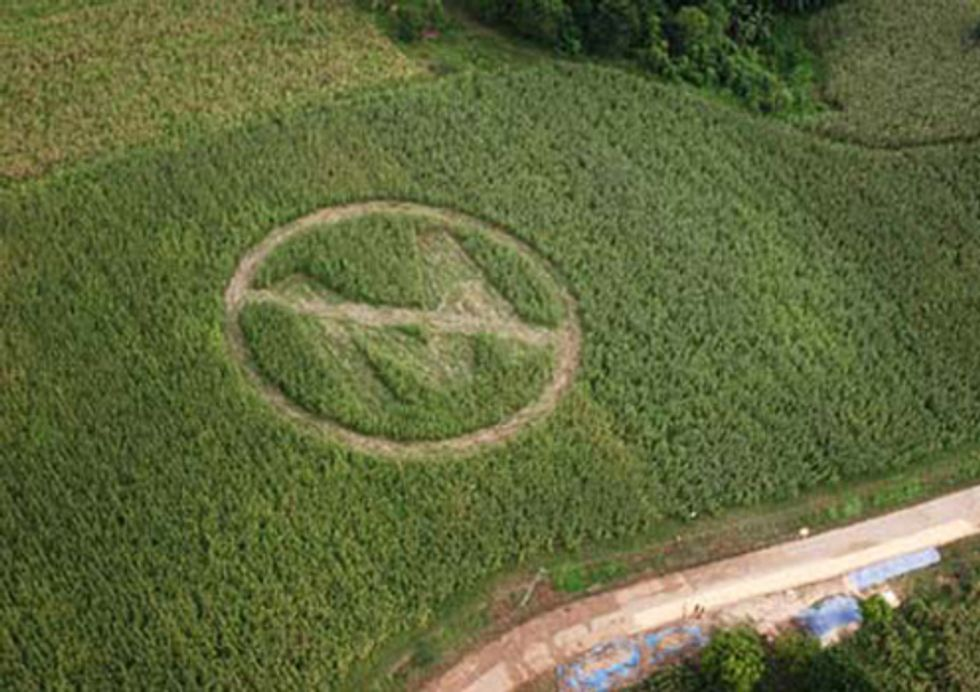Support Family Farmers in Their Case against Monsanto